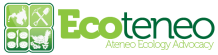 Ecoteneo_banner_green_transparent_background