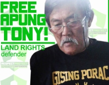 free apung tony 4 cropped